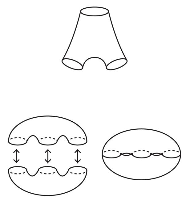 Haken_sized_Figure08.jpg