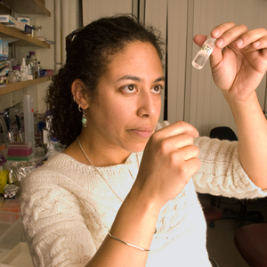 An interview with the developmental biologist Cassandra Extavour on the origins of multicellular organisms and the evolution of cooperation.
