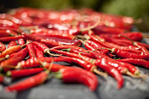 Scientists have finally resolved the structure of the molecule that responds to chili peppers, high temperatures and spider toxins.