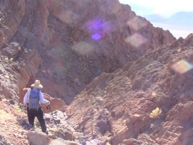 Video: During a recent trip to the Black Mountains of Death Valley National Park, Paul Knauth explained why he thinks oxygen-breathing organisms arose on land rather than in the seas.
