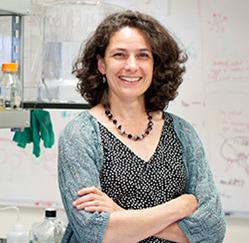 Nicole King, bióloga da Universidade da Califórnia, em Berkeley, estuda as origens dos animais, um dos grandes mistérios da história da vida.