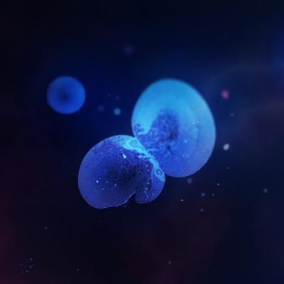 Bubble Universes
