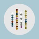 Rotifer Chromosomes