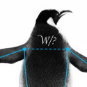 "Scientists at the Large Hadron Collider have detected an anomaly in measurements of rare particle decays dubbed ""penguin processes."""