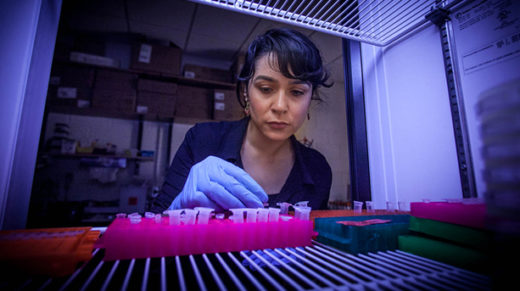 <p>By swapping ancient genes into modern <em>E. coli</em>, scientists hope to tease out the rules of evolution.</p>