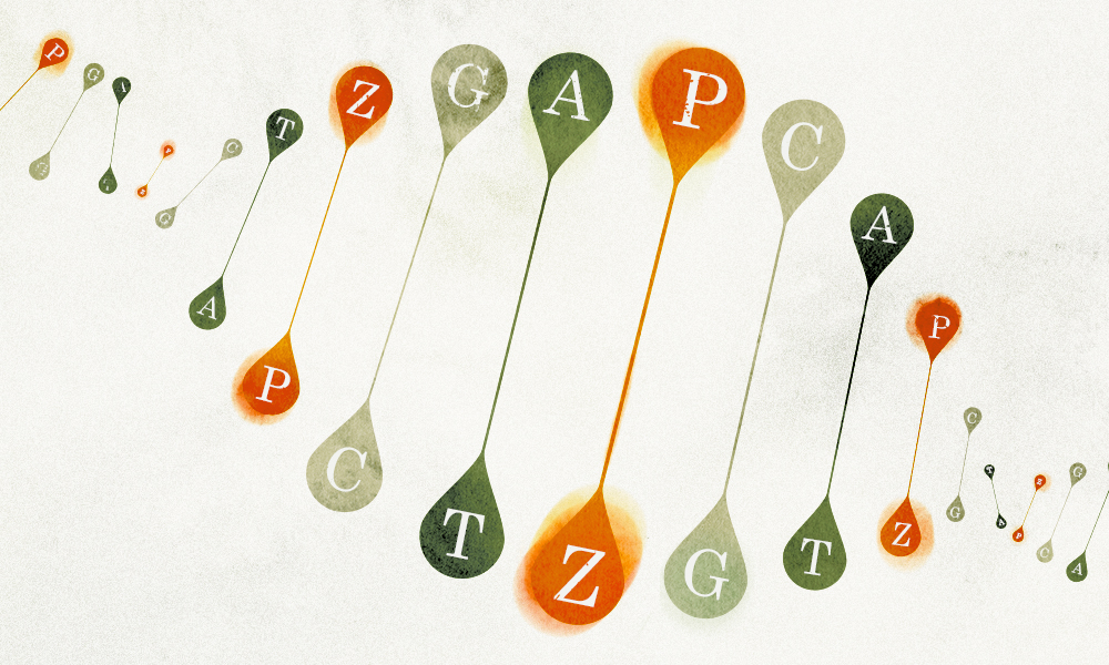 New Letters Added to the Genetic Alphabet | Quanta Magazine