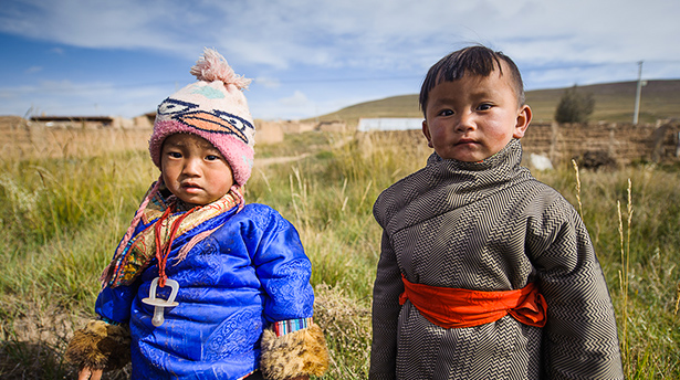 Native Tibetans make use of a gene derived from Denisovans to stay healthy at high altitudes.
