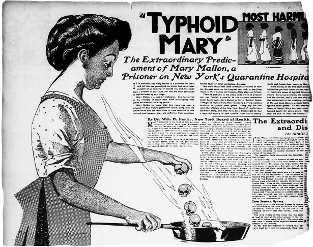 Why Typhoid Mary Never Got Sick | Quanta Magazine