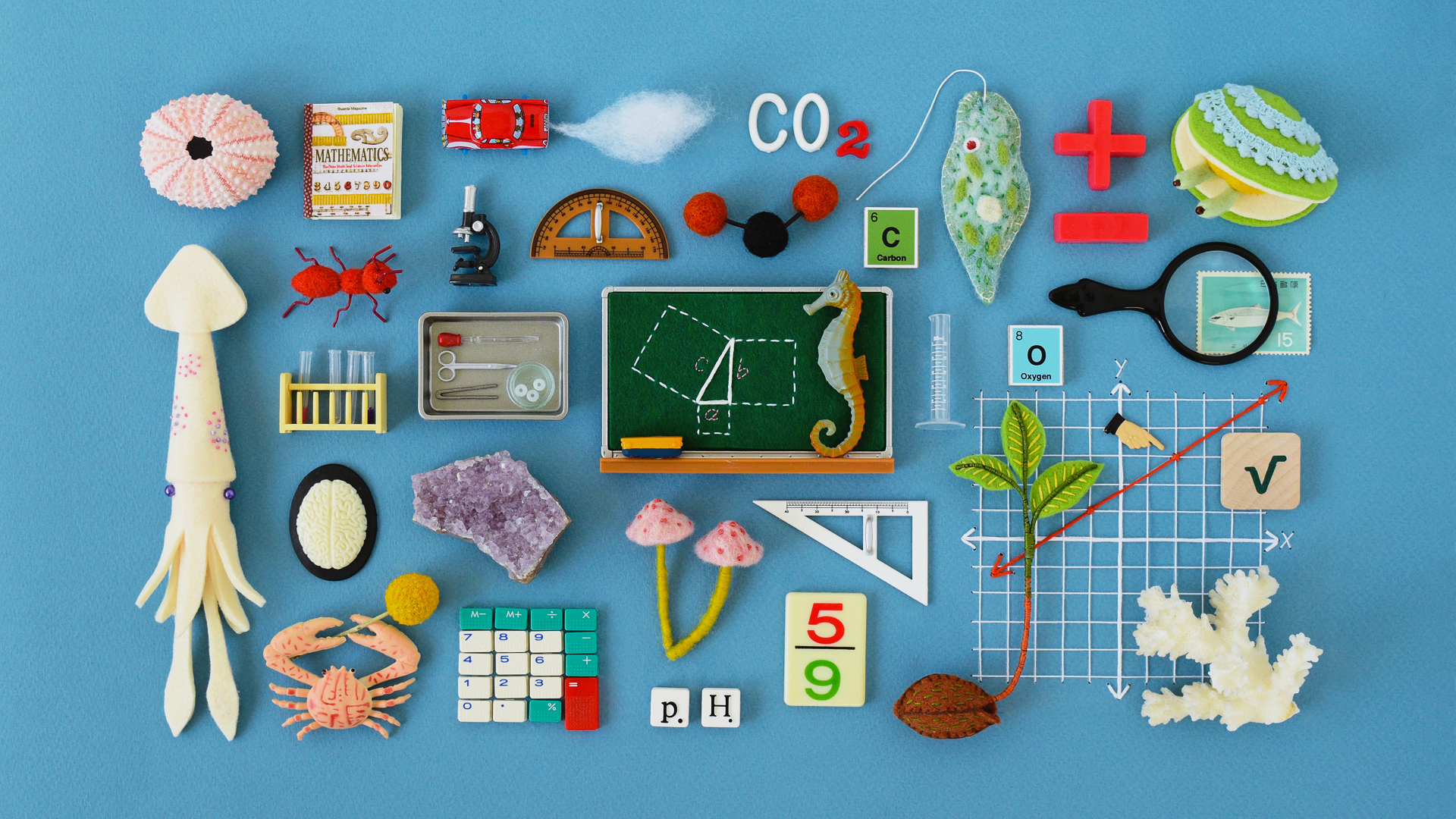 Math and Science Education – Pencils Down | Quanta Magazine