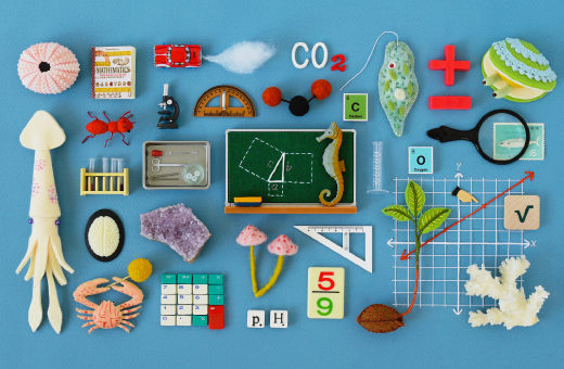 The latest effort to overhaul math and science education offers a fundamental rethinking of the basic structure of knowledge. But will it be given time to work?