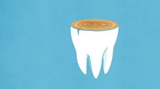 Tiny lines laid down by tooth enamel appear to reveal a previously unknown biological rhythm. If confirmed, the finding could help researchers understand why big animals grow slower — and live longer — than small ones.
