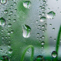 Photo of raindrops on a window by Philip Kraaijenbrink