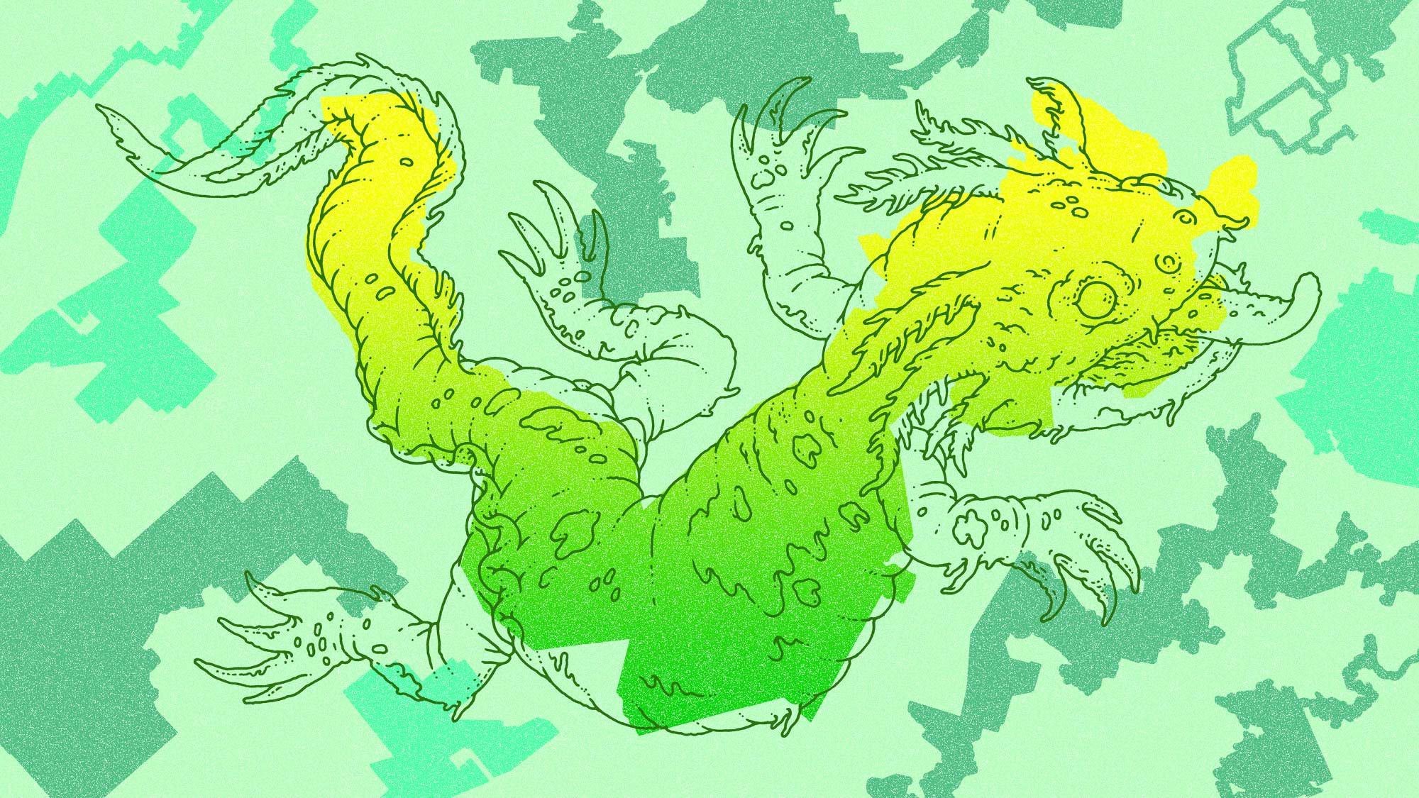 Gerrymandering salamander illustration