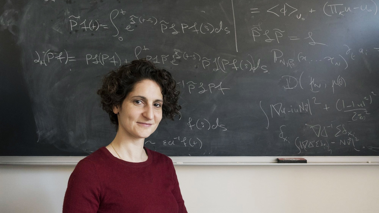 Sylvia Serfaty explains why you don't have to be a genius to become a mathematician.