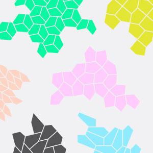 15 pentagon tessellations