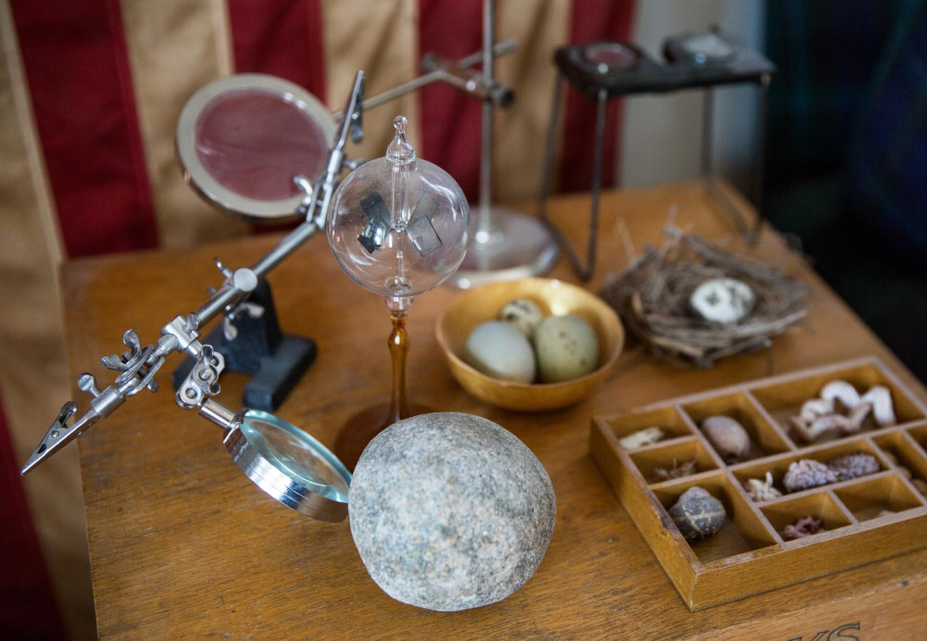 Rocks, shells, magnifying glass