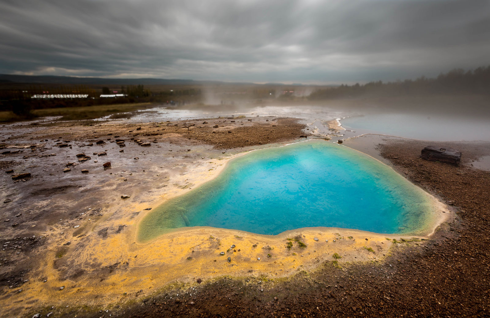 The muddy soils around geothermal hot springs in Iceland, like the Geysir spring pictured here, are the natural habitat for primitive photosynthetic heliobacteria. Scientists are now studying those organisms for insights into the early evolution of photosynthesis.