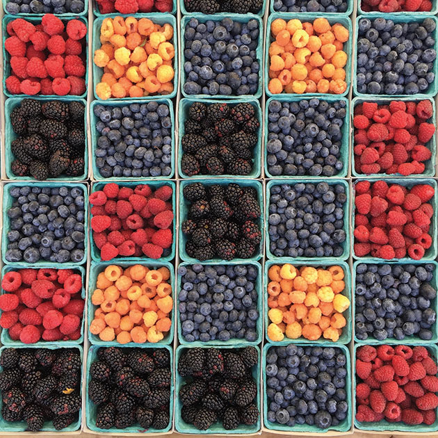 Square tiling of berry filled cartons