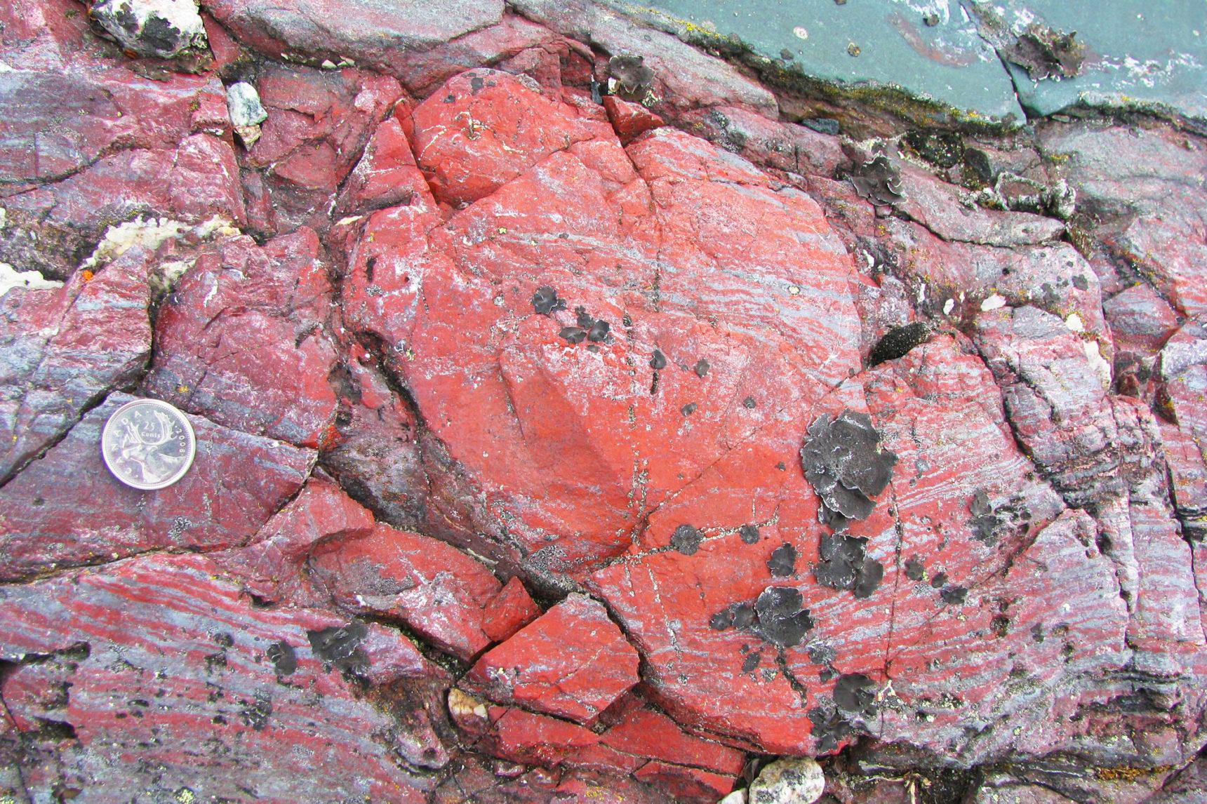 Ярко-красная скала в поясе Ньювуагиттук-Гринстоун, по-видимому, содержит трубчатые микрофоссилы, датируемые, по меньшей мере, 3,77 миллиарда лет назад.