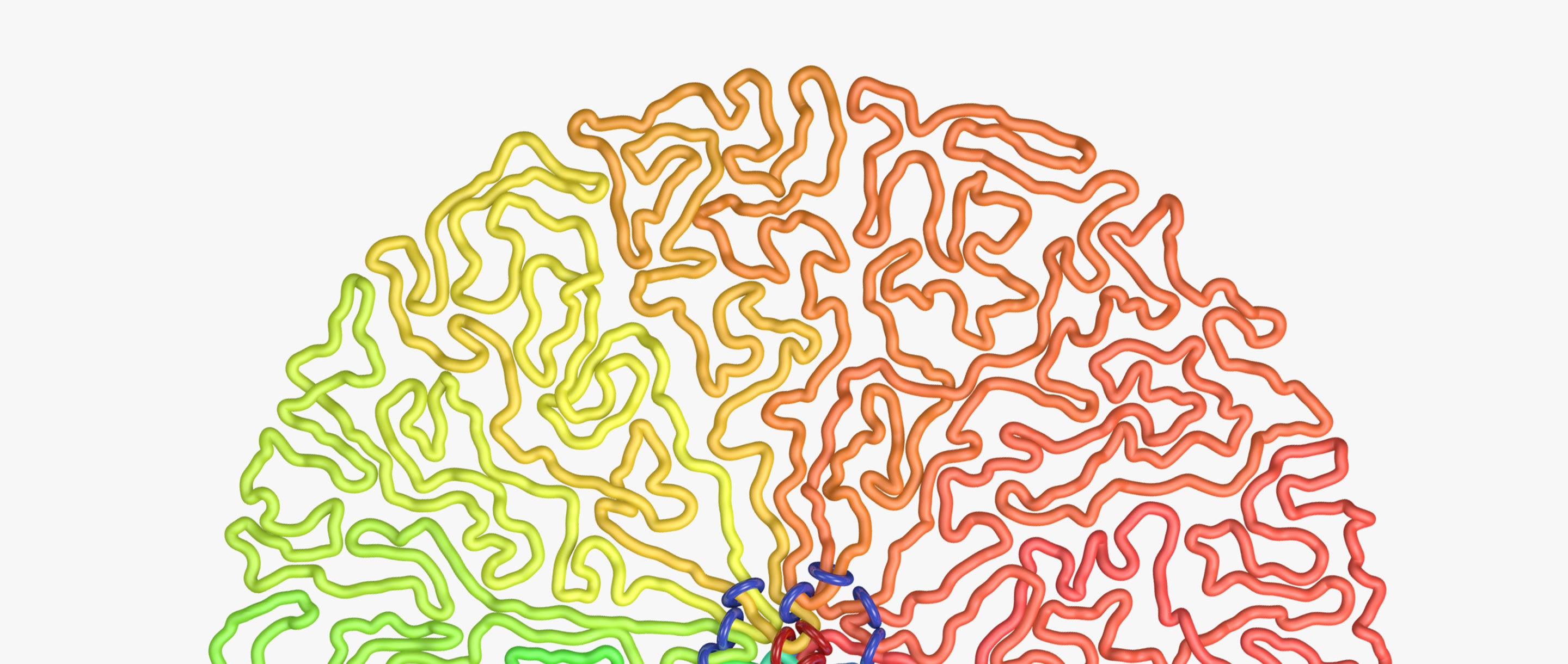 Homepage illustration of genome packaging