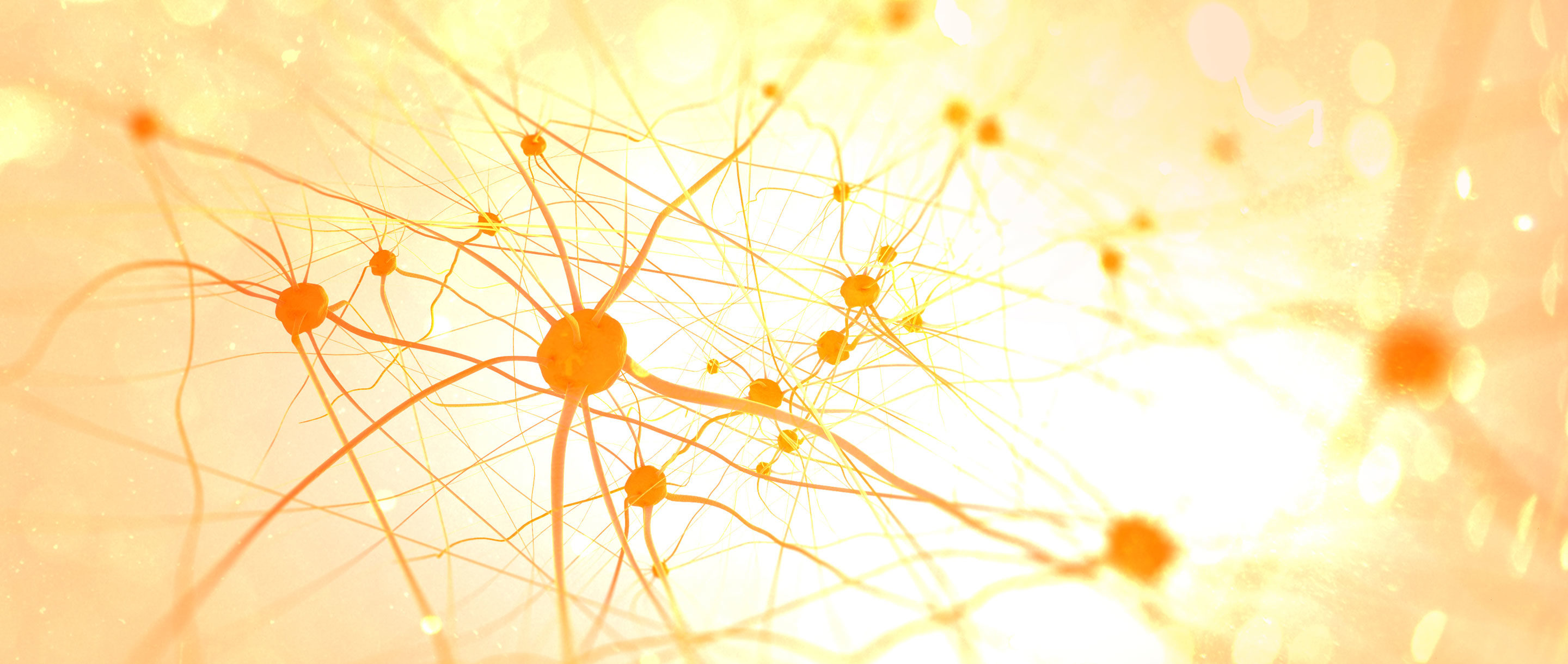 Homepage photo of lit neurons