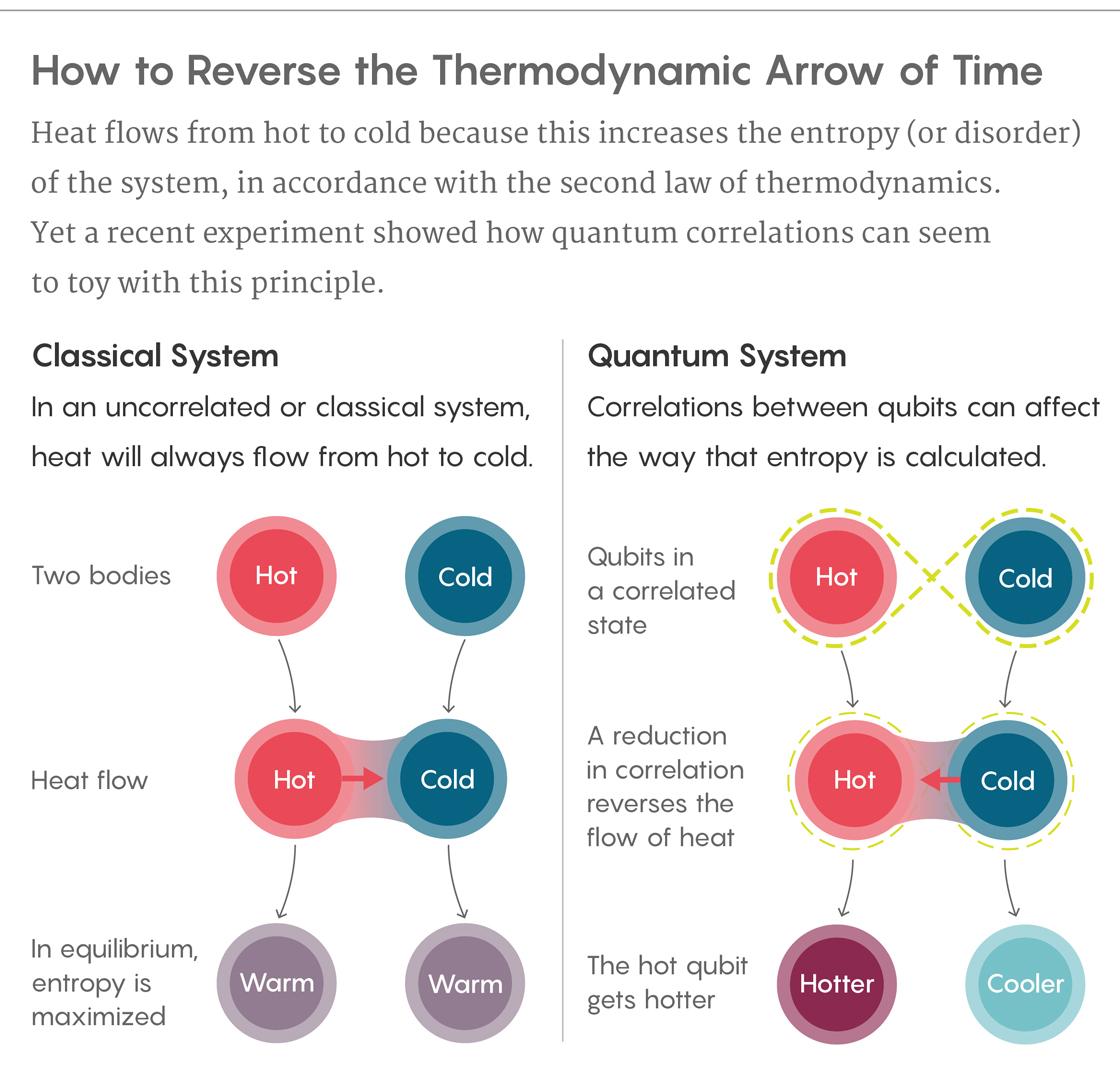 quantum correlations reverse thermodynamic arrow of time
