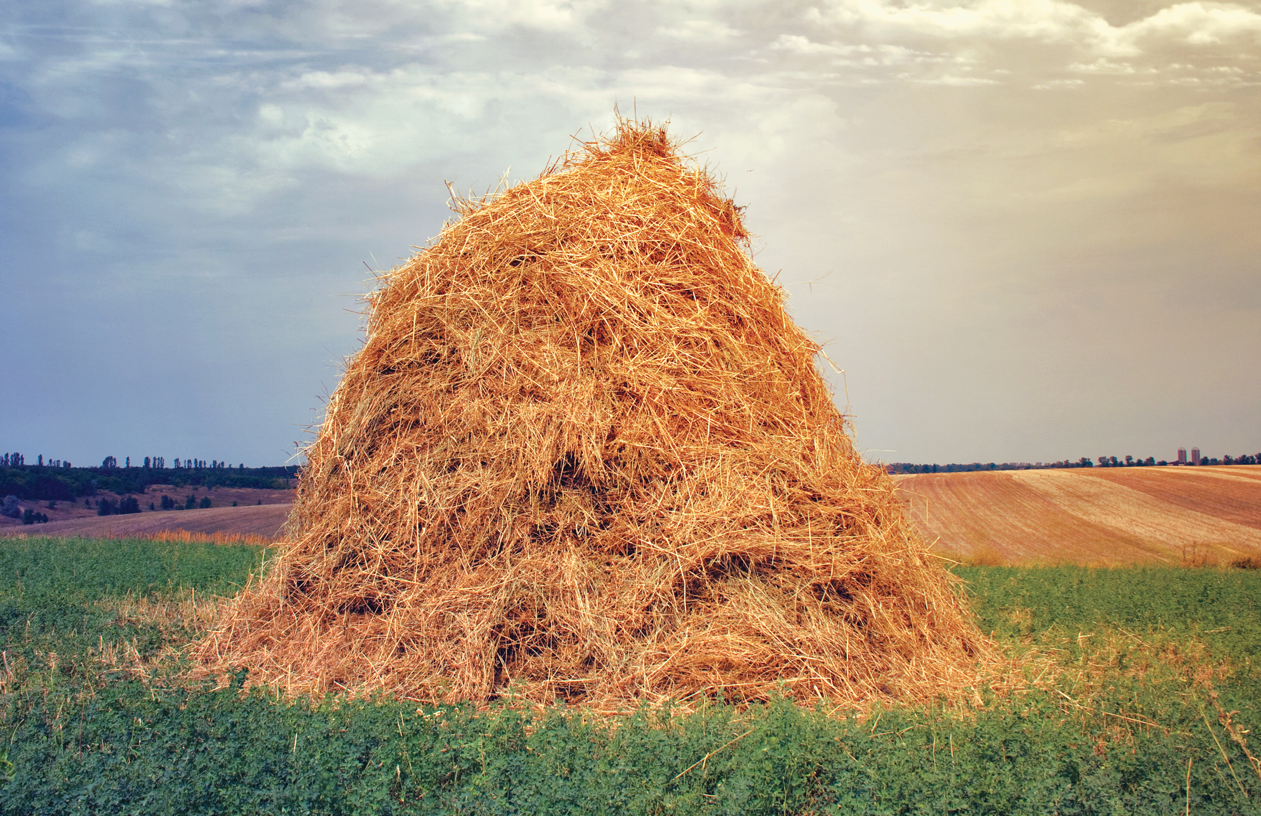 "Art for ""Why Mathematicians Can't Find the Hay in a Haystack"""