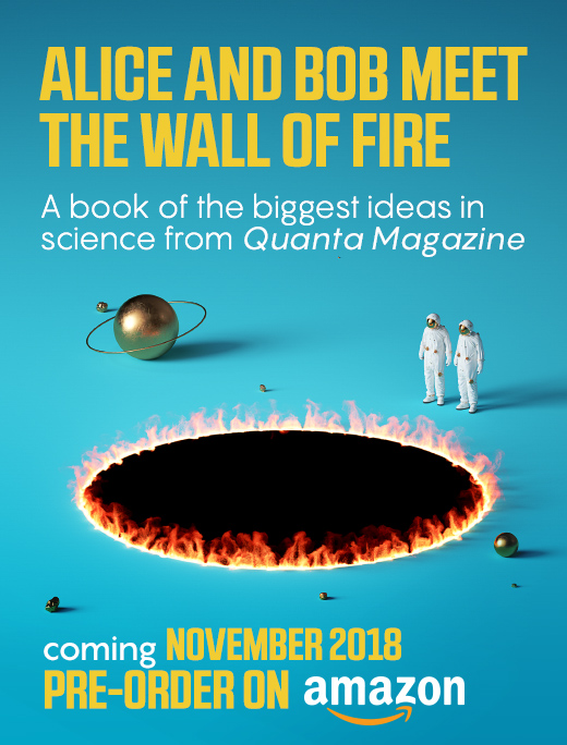 Alice and Bob Meet the Wall of Fire -