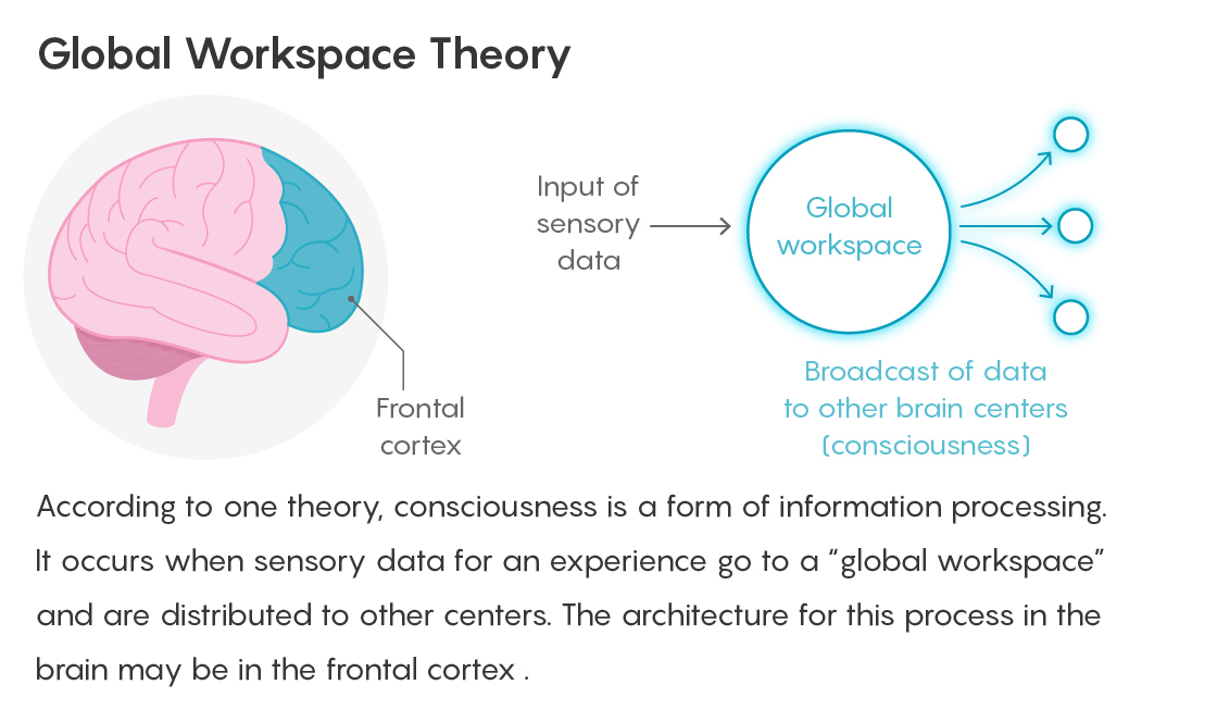 GRAPHIC: GLOBAL WORKSPACE THEORY FIGURE