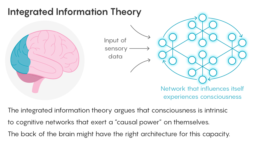 GRAPHIC: INTEGRATED INFORMATION THEORY FIGURE