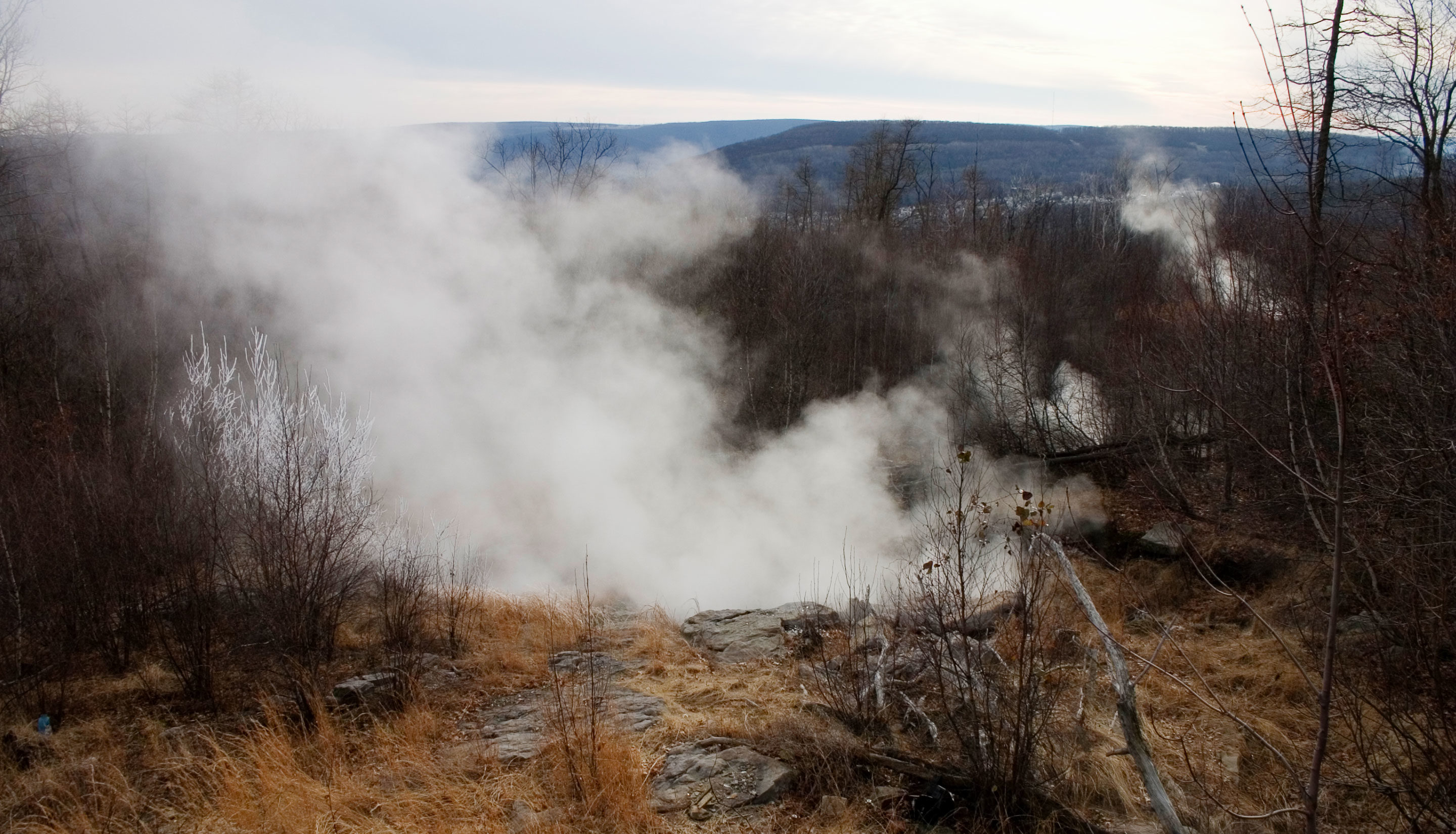 """Art for """"Dormant Microbes Bide Their Time Over Decades - Old Fires"""""""