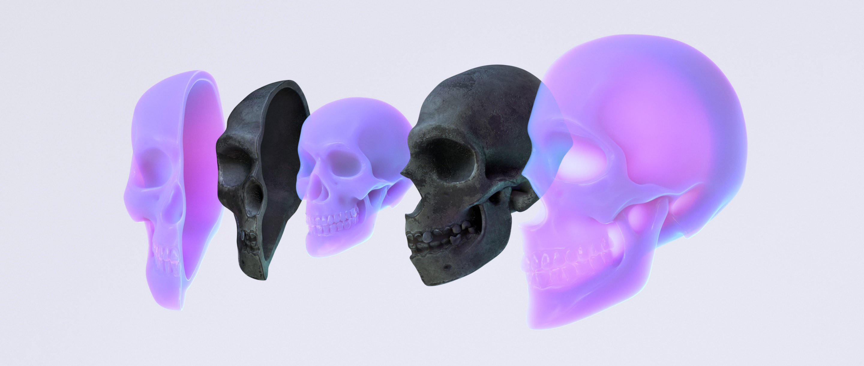 3D illustration of three human skulls, split into left and right halves and nested one inside the next.