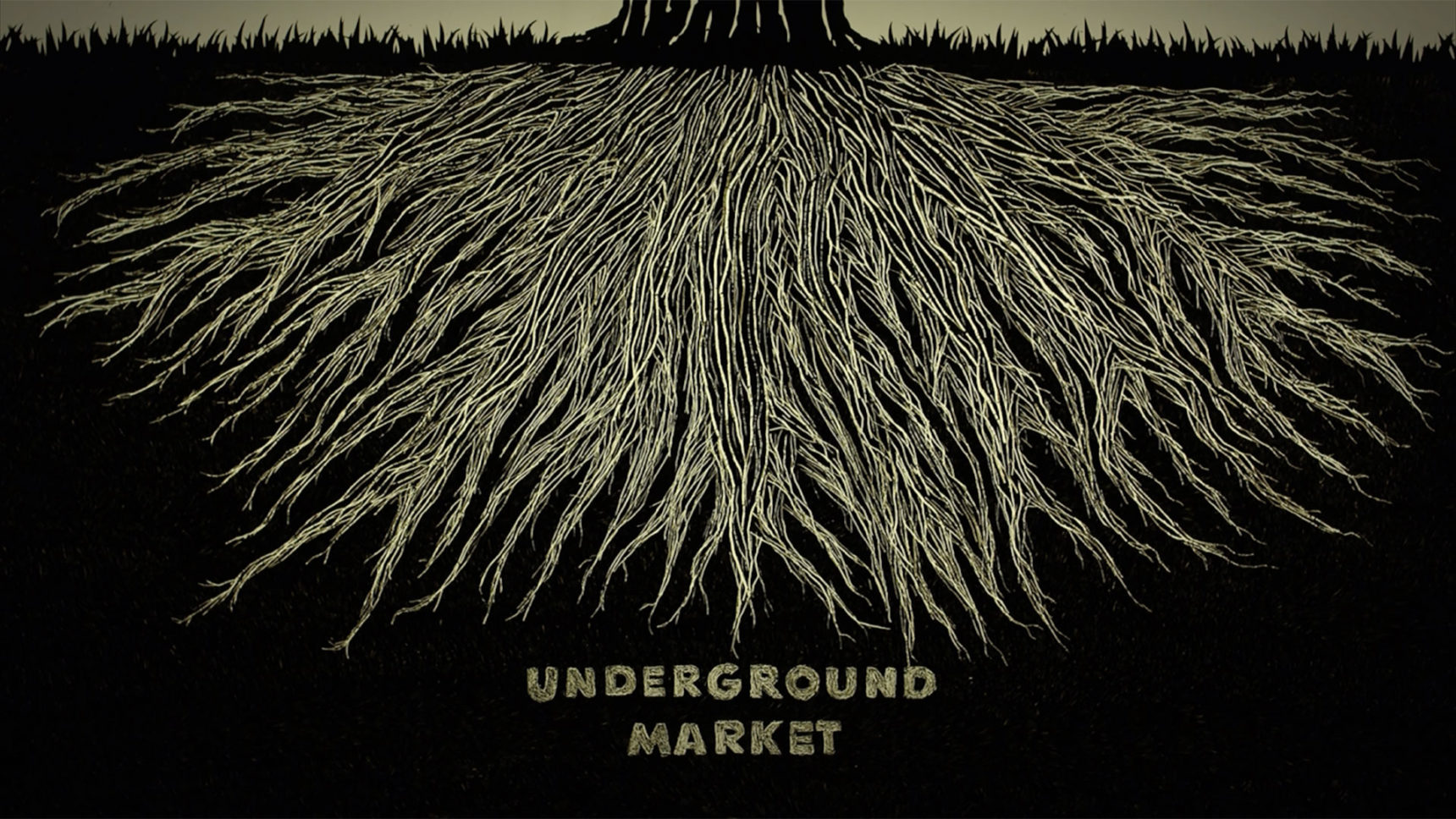 "Video: This animated film by Toby Kiers and the artist Niels Hoebers depicts the ""underground market"" for phosphorus and other exchanged nutrients controlled by networks of soil fungi growing around plant roots."