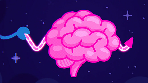 Dueling Brain Waves Anchor or Erase Learning During Sleep