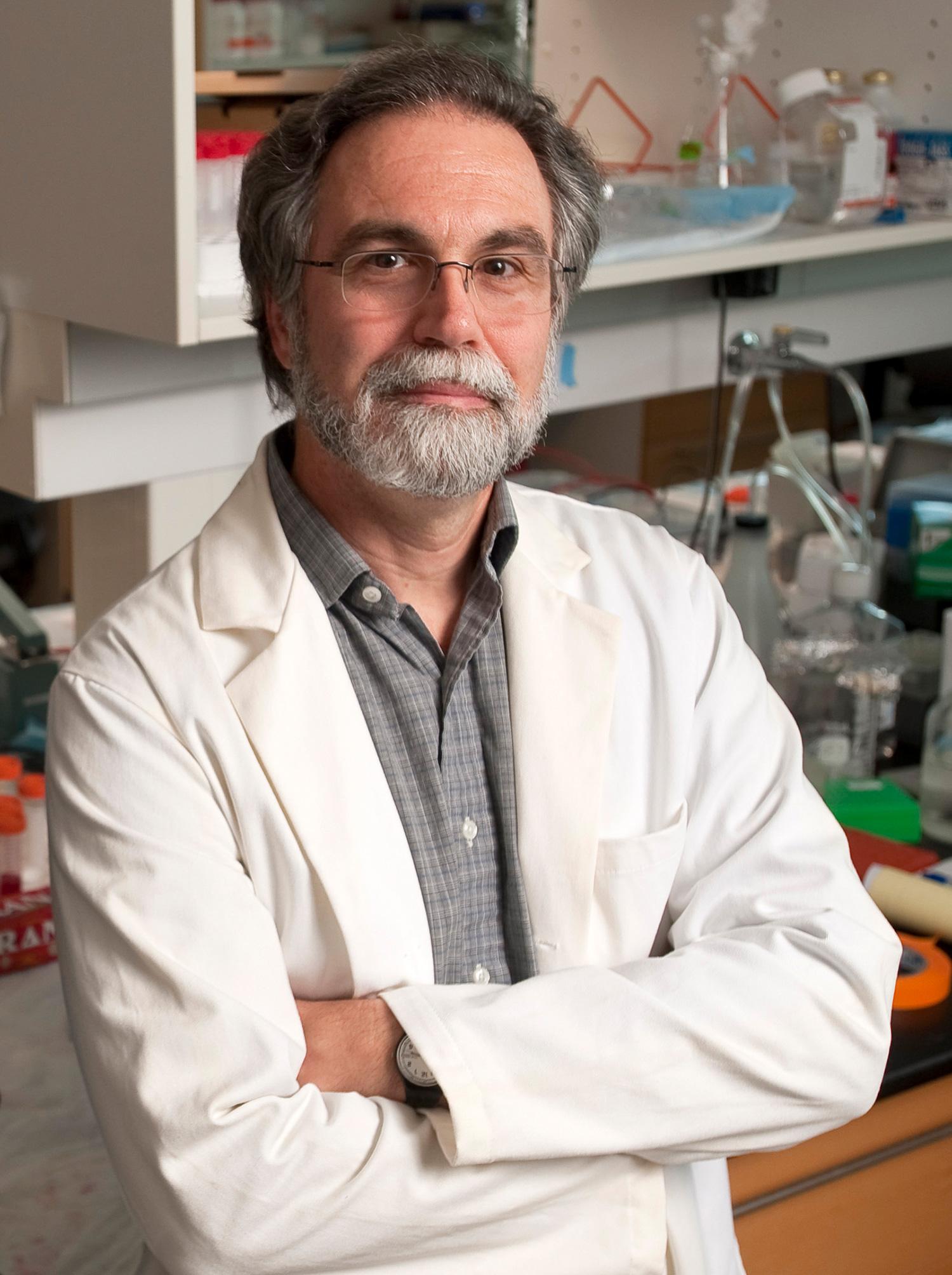 Portrait of Gregg L. Semenza