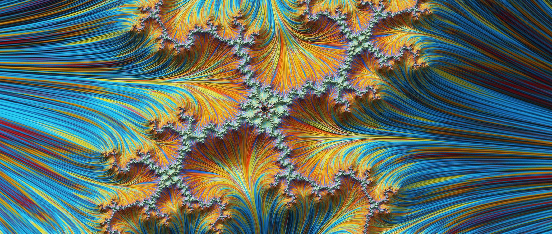 A fractal pattern.