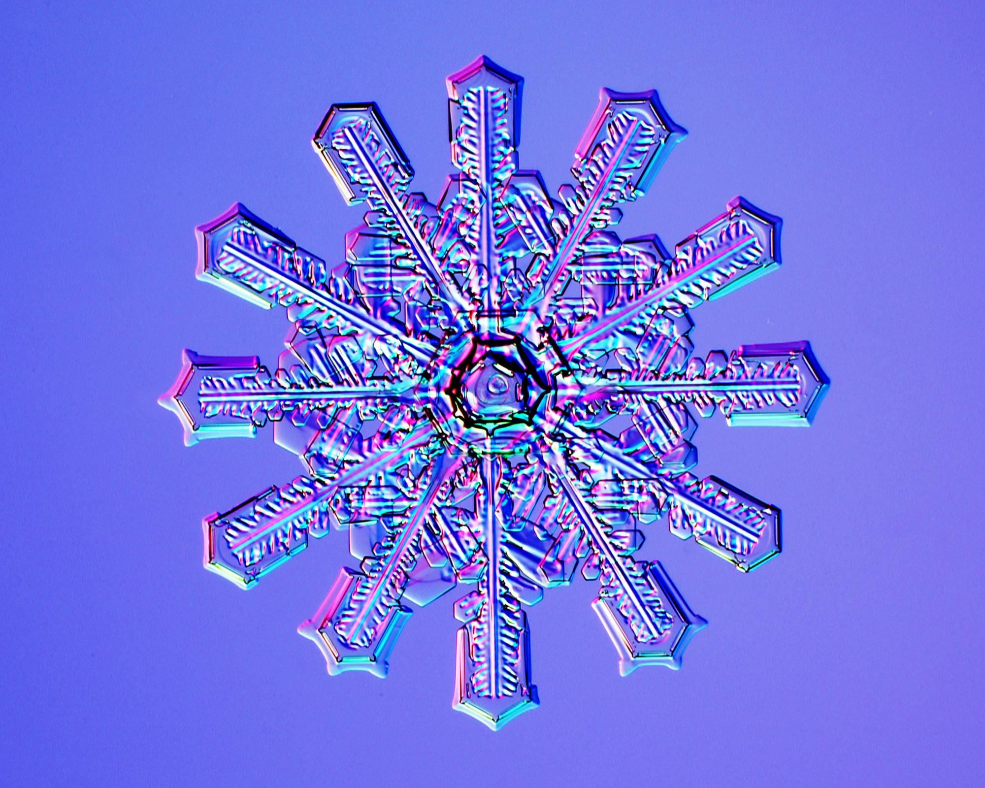 Set of 6! Winter white snowflakes on purple pencils