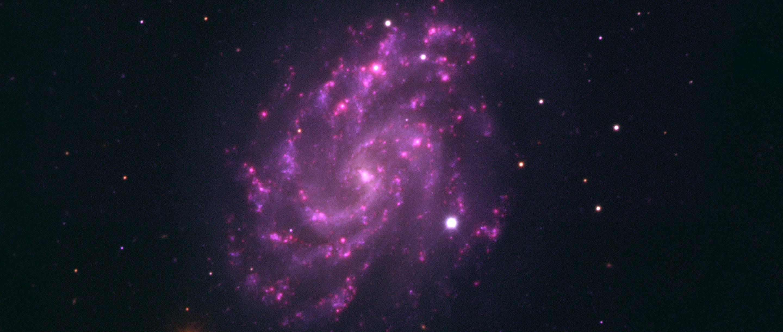 Supernova in galaxy NGC 5584.
