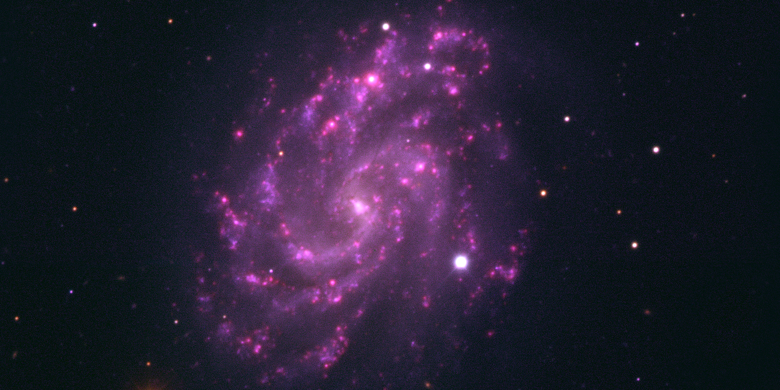 Supernova in galaxy NGC 5584.