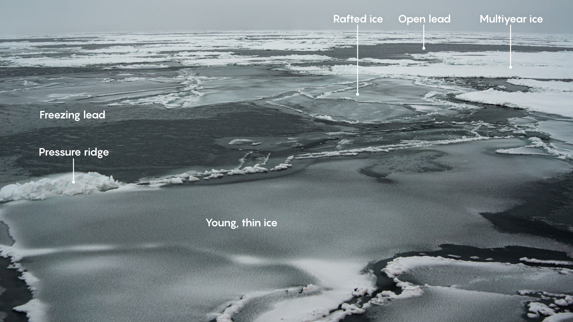 Multiple varieties of sea ice.