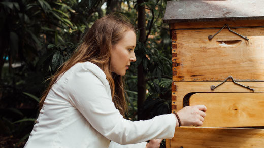 Photo of Scarlett Howard, a researcher at the University of Toulouse, working with honeybees