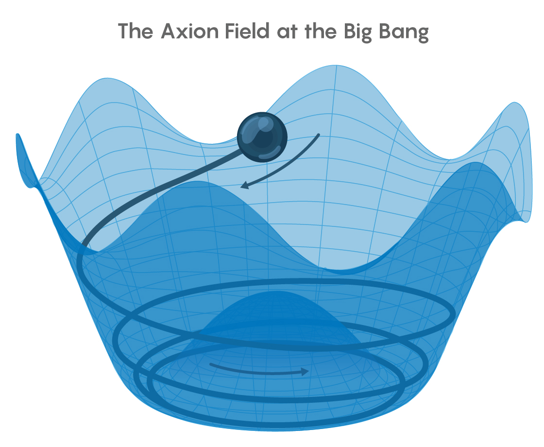Illustration of the Mexican hat axion field.