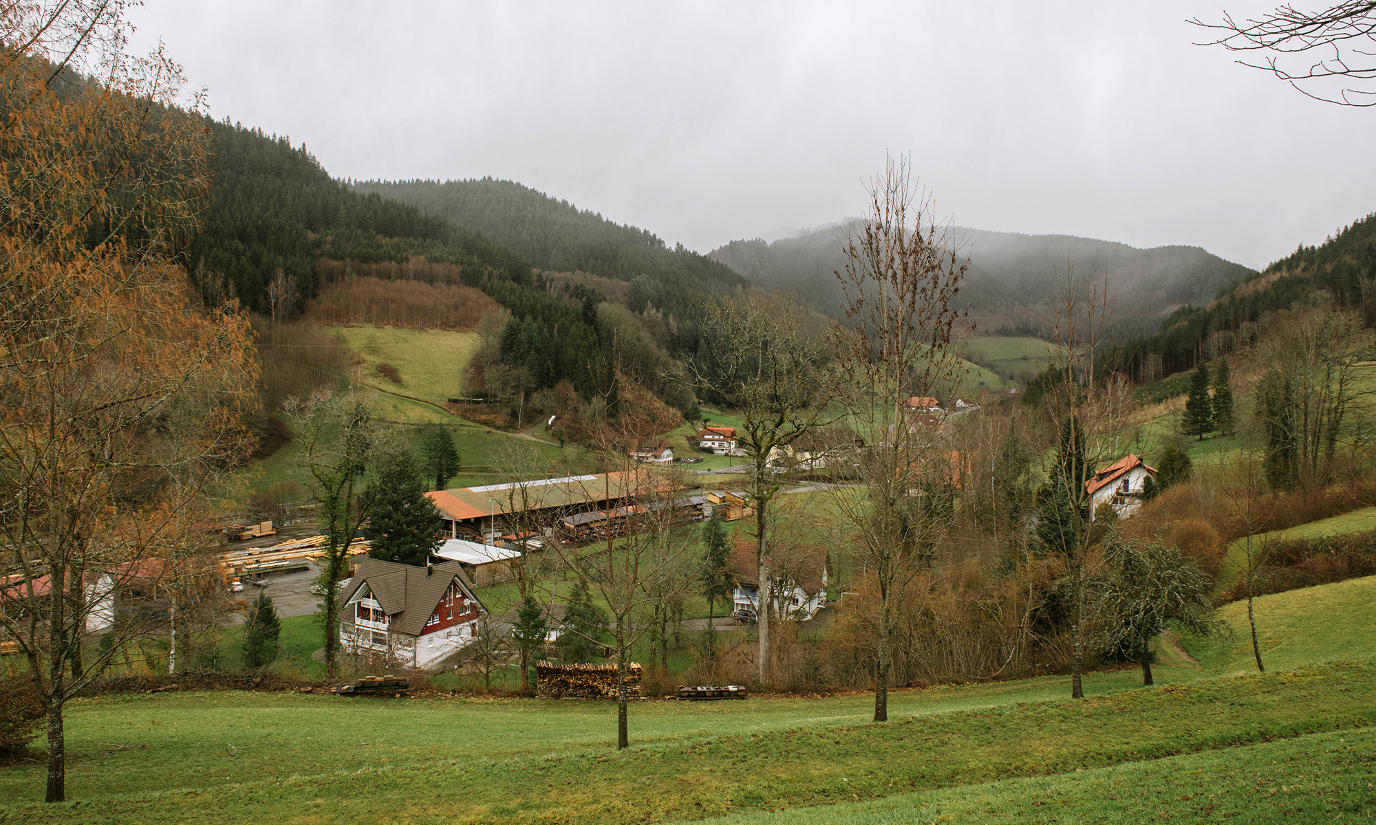Photo of countryside near Oberwolfach, including green hills, forests, houses and other buildings