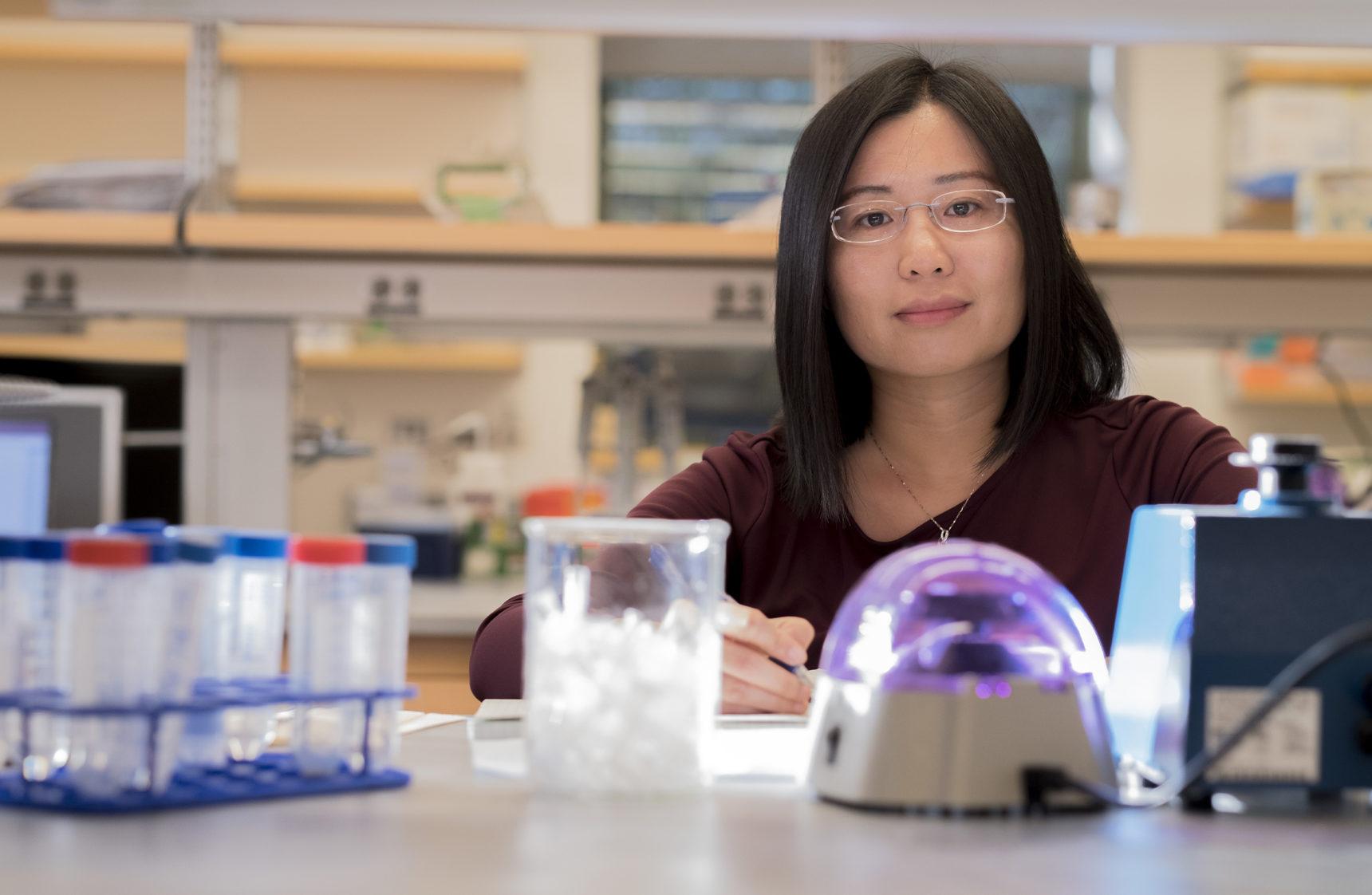 Portrait photo of Li Zhao, a geneticist at Rockefeller University.
