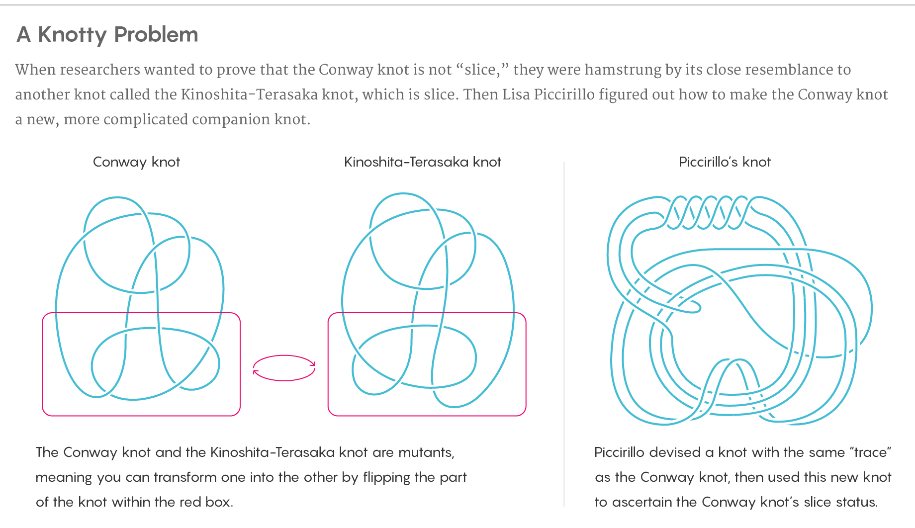 An informational graphic showing the Conway knot, the related Kinoshita-Terasaka knot and a complicated companion knot Lisa Piccirillo devised to help determine the Conway knot's slice status.