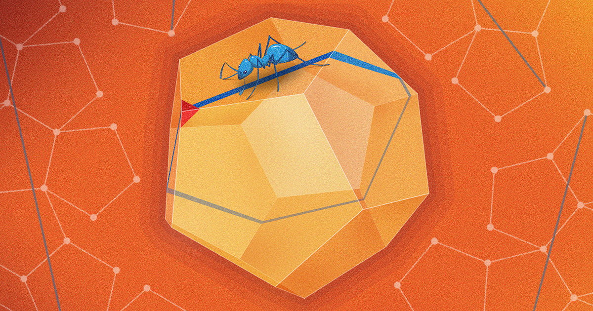 Mathematicians Report New Discovery About the Dodecahedron