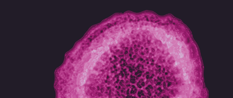 Electron micrograph of the hepatitis C virus.