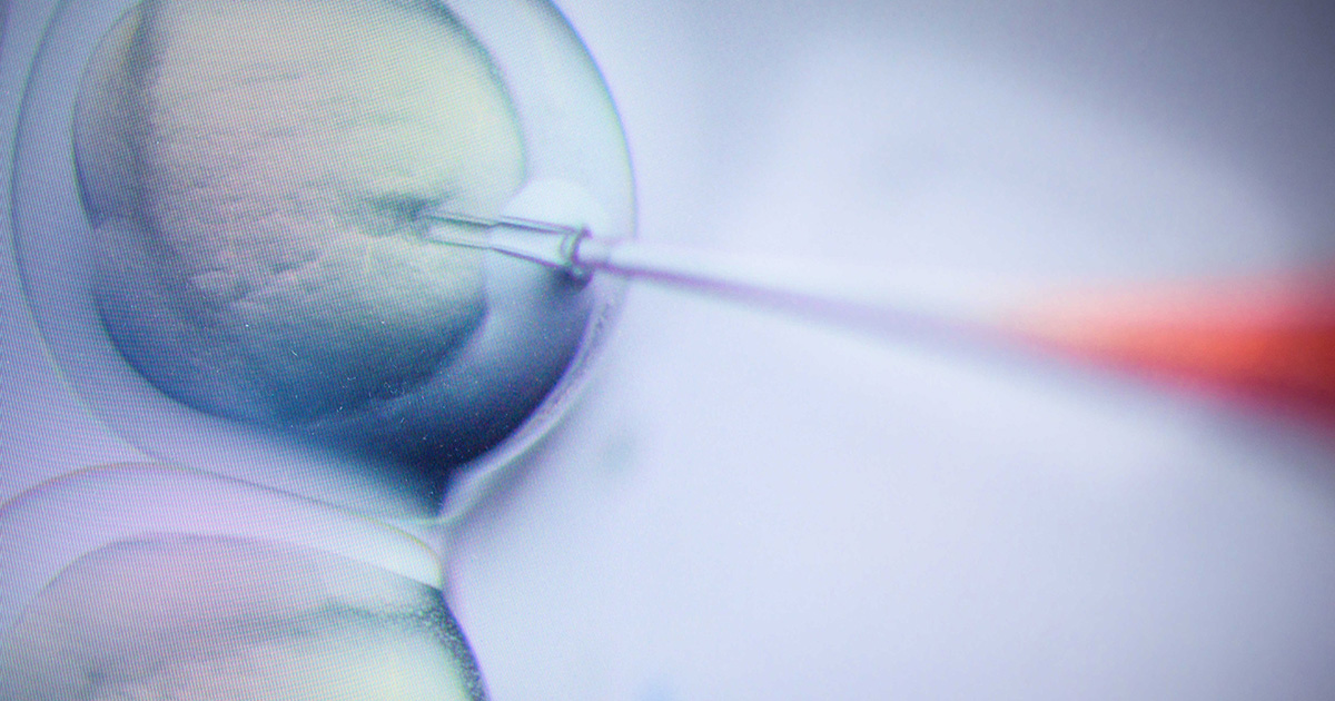 Nobel Chemistry Prize Awarded for CRISPR 'Genetic Scissors'