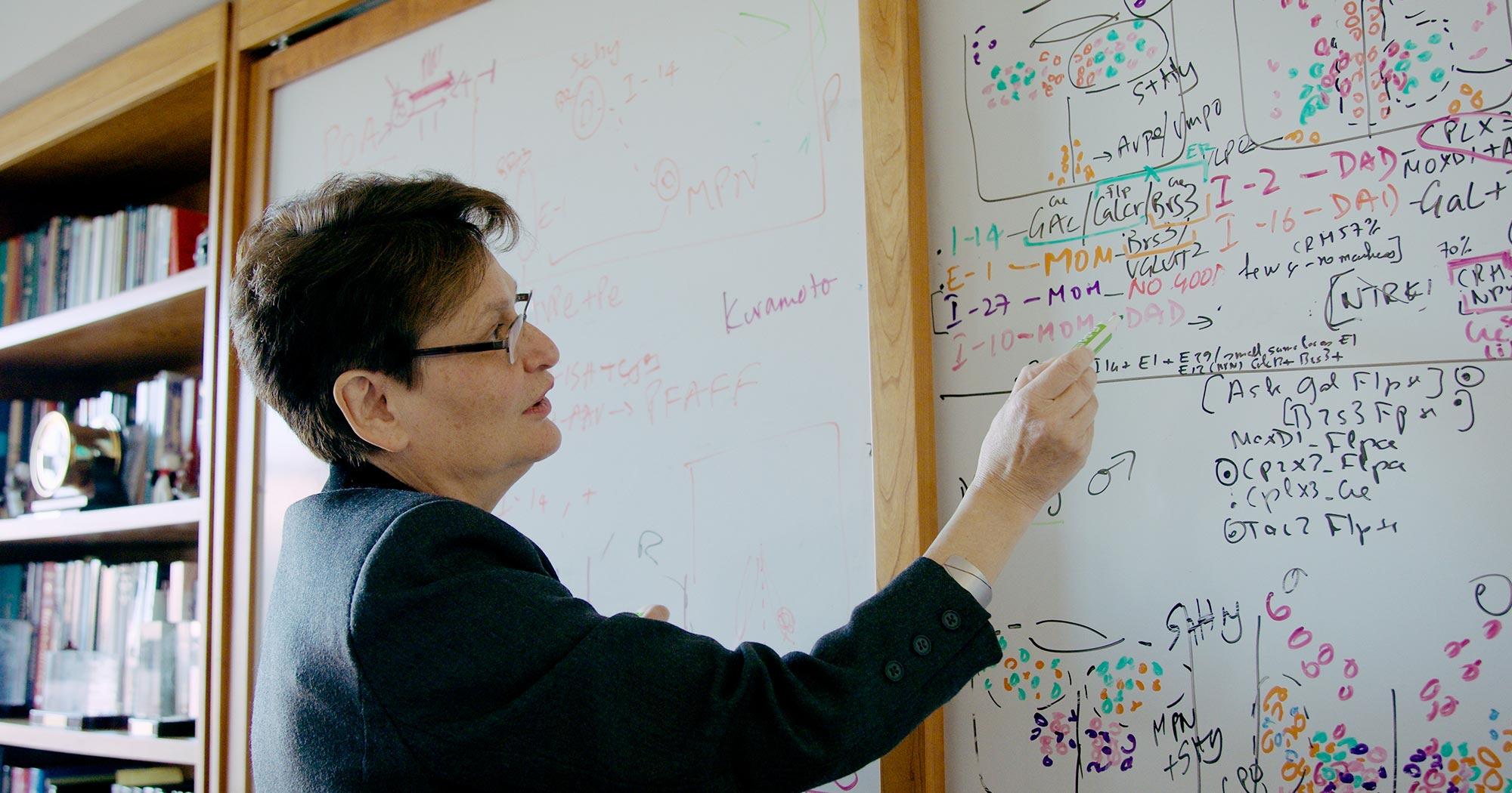 Photo of Catherine Dulac of Harvard University.
