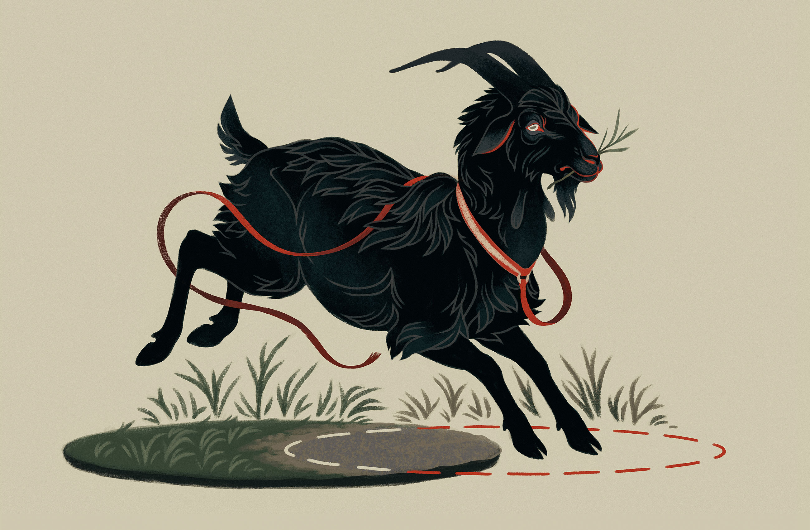 Illustration of a black goat with a red leash, grazing at the intersection of two circles